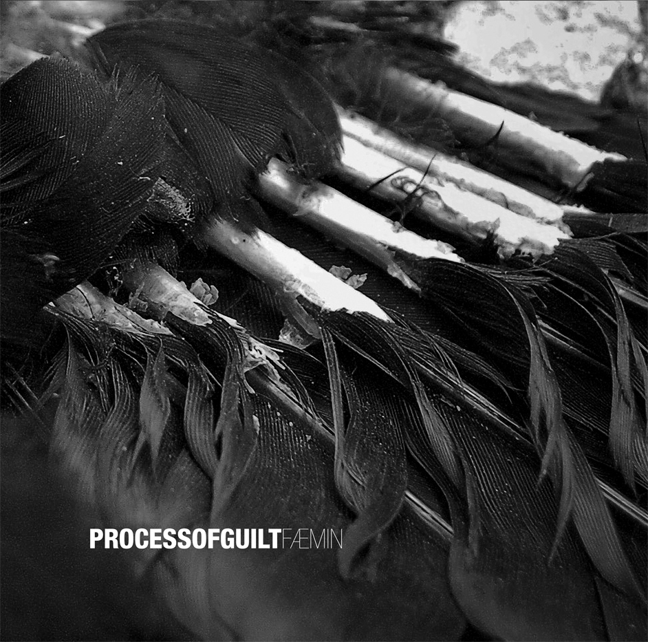 Process of Guilt – Faemin