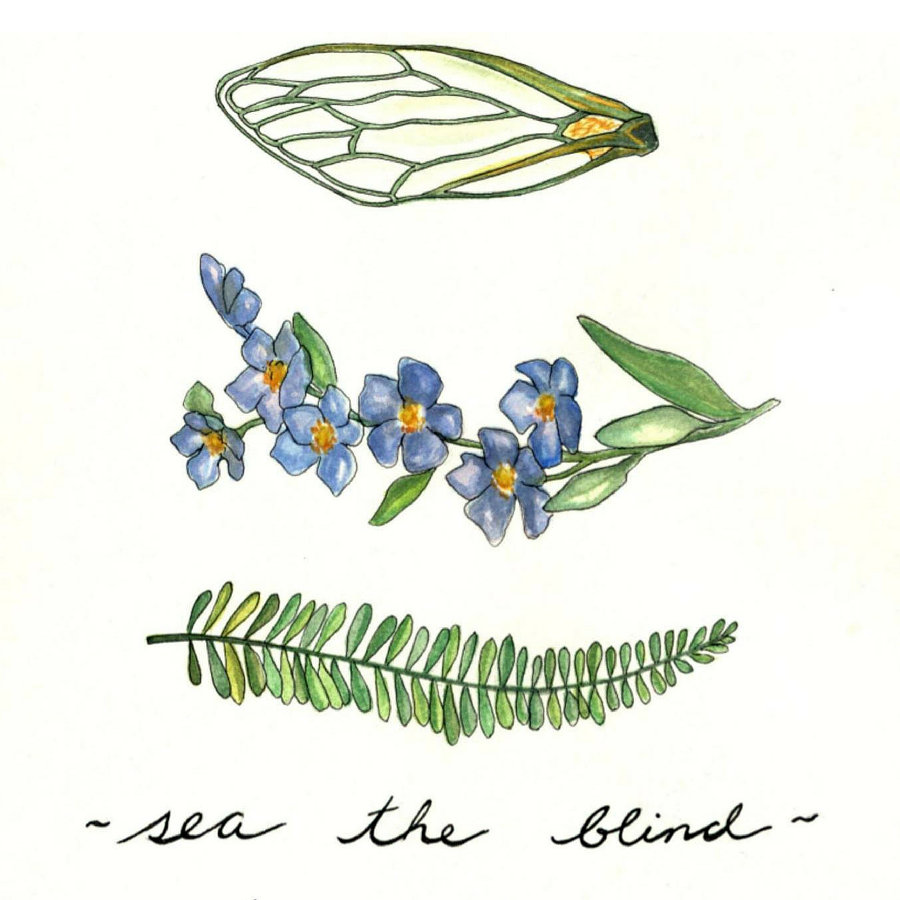 Sea Offs – Sea the Blind