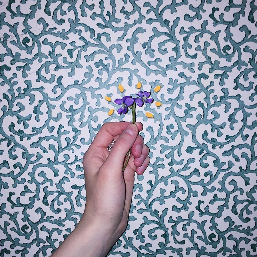 Charlie Burg – One, Violet