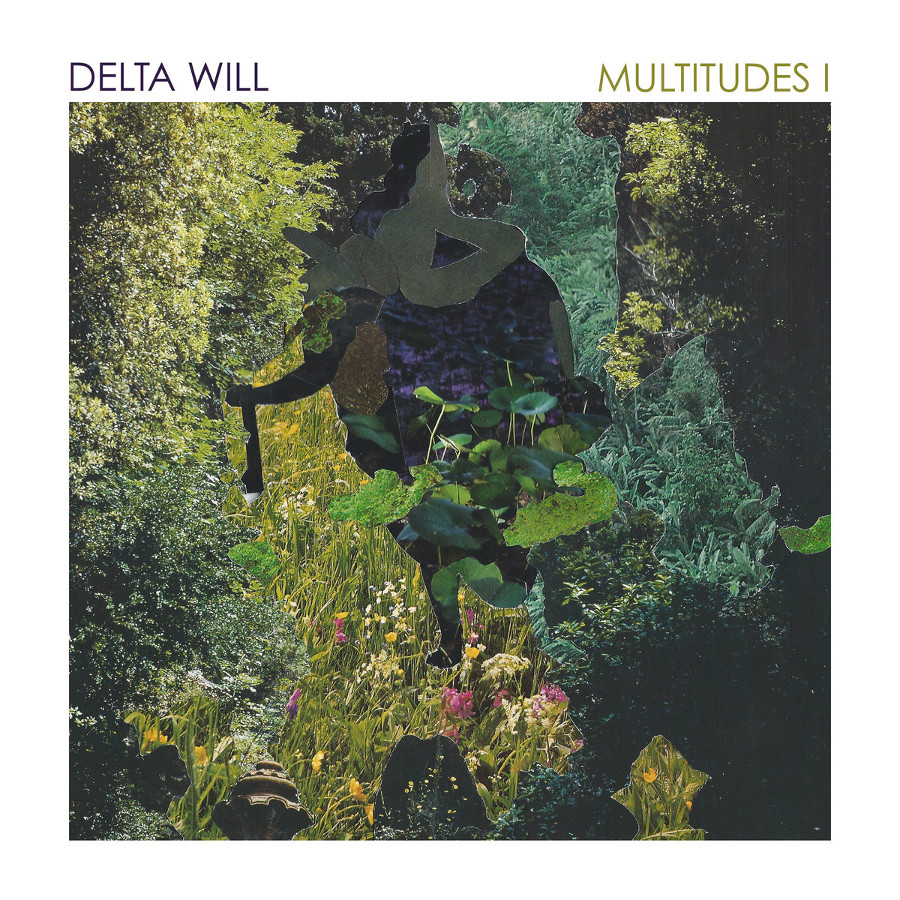 Delta Will – Multitudes I