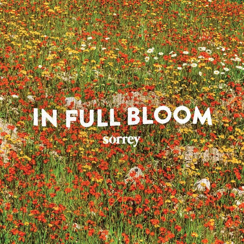 Sorrey – In Full Bloom